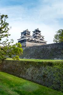 熊本城大小二つの天守を見る風景の写真素材 [FYI02664514]