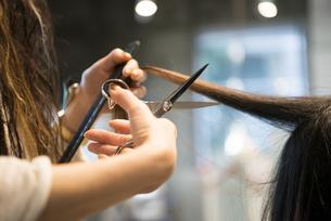 ハサミを持っている美容師の手元の写真素材 [FYI02664517]