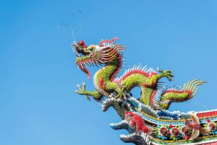 龍山寺屋根の飾り龍の写真素材 [FYI02664594]