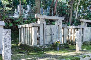 菩提寺の龍渓山久松寺洞雲院にある於大の方の墓の写真素材 [FYI02664712]