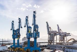 複数のコンテナクレーンを見るパレルモ港の写真素材 [FYI02664729]