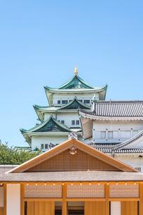 名古屋城本丸御殿越しに大小天守を見るの写真素材 [FYI02664745]