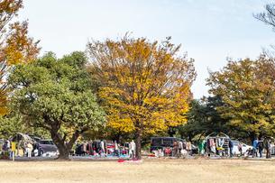 公園のフリーマーケット風景の写真素材 [FYI02664746]