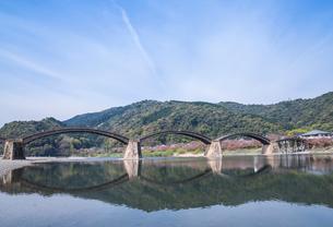 川面に映る錦帯橋の写真素材 [FYI02664759]