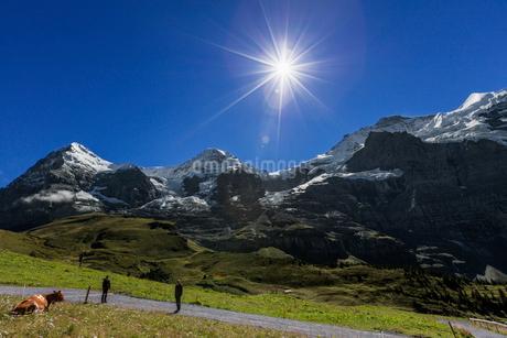 スイスアルプス、トップオブヨーロッパの写真素材 [FYI02664848]