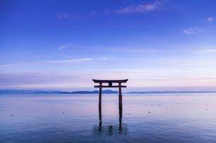 夕暮れ時の白鬚神社湖中大鳥居を見る風景の写真素材 [FYI02664931]
