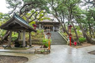 高山稲荷神社の拝殿と手水舎を見る風景の写真素材 [FYI02664933]