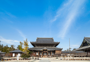 高田本山如来堂と通天橋を見るの写真素材 [FYI02665060]
