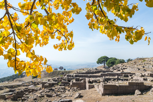 紅葉した枝葉越しに見る古代ペルガモン遺跡風景の写真素材 [FYI02665376]