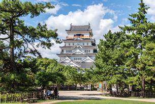 樹木越しに見る福山城天守閣正面の写真素材 [FYI02665396]