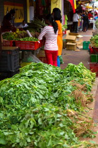 リトルインディア,店先の葉野菜の写真素材 [FYI02665481]