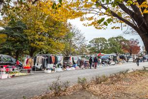 公園のフリーマーケット風景の写真素材 [FYI02665482]
