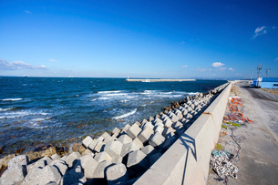 日間賀島 西の海岸線の写真素材 [FYI02665524]