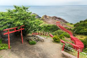 日本海を見下ろす断崖に立ち並ぶ朱色の鳥居の写真素材 [FYI02665568]