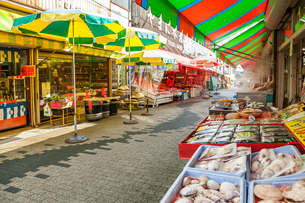 東尋坊商店街風景の写真素材 [FYI02665622]