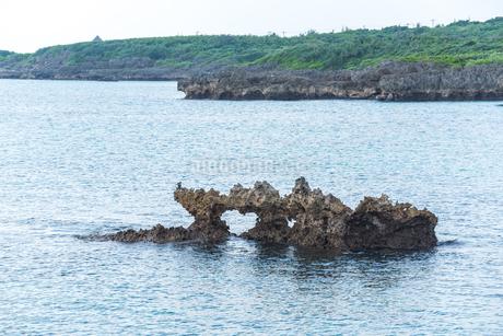 海面に見る隆起サンゴ礁のハート岩の写真素材 [FYI02665799]