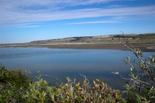 アラスカ 北極圏の湿地帯(WETLAND)を流れる川の写真素材 [FYI02665821]