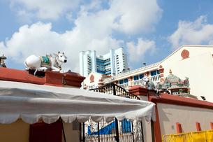 スリ・マリアマン寺院 パゴダ・ストリート側の門と聖牛の写真素材 [FYI02666030]