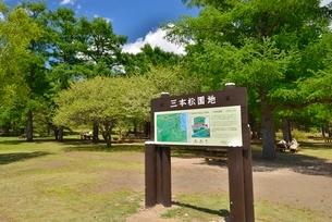 戦場ヶ原三本松園地の写真素材 [FYI02666146]