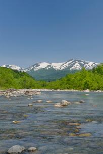 新緑の寒河江川と残雪の月山の写真素材 [FYI02666167]
