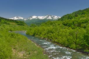 新緑の寒河江川と残雪の月山の写真素材 [FYI02666183]