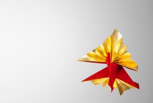 ゴールドと赤のクジャク鶴の写真素材 [FYI02666187]
