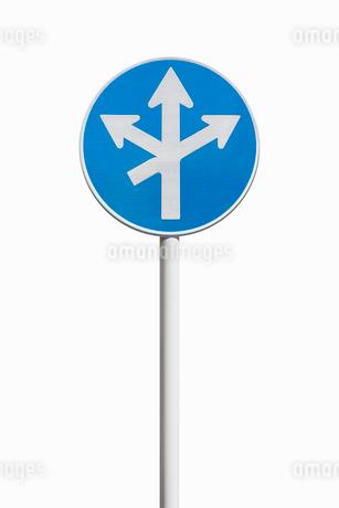 道路標識 指定方向外進行禁止の写真素材 [FYI02666238]