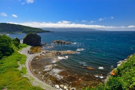 高野崎の海岸風景と龍飛崎の写真素材 [FYI02666250]