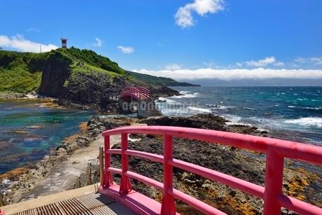 高野崎の海岸遊歩道と灯台の写真素材 [FYI02666314]
