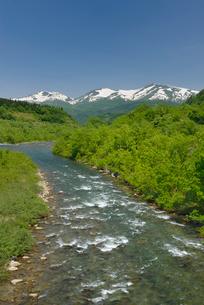新緑の寒河江川と残雪の月山の写真素材 [FYI02666402]