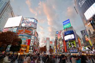 渋谷スクランブル交差点の写真素材 [FYI02666403]