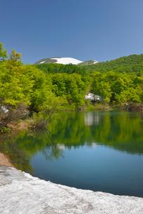 地蔵池の新緑と残雪の月山の写真素材 [FYI02666566]