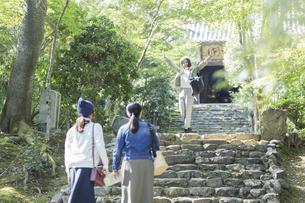 参道を歩く3人の女性の写真素材 [FYI02666608]