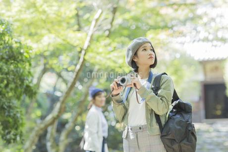 カメラを持って見上げる若い女性の写真素材 [FYI02666639]