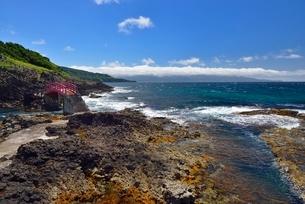高野崎の海岸風景と龍飛崎の写真素材 [FYI02667071]