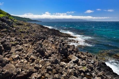 高野崎の海岸風景と龍飛崎の写真素材 [FYI02667099]