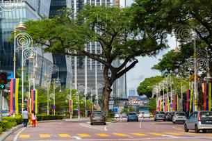 リトルインディアの大通り、Jalan Tun Sambanthanの写真素材 [FYI02667211]
