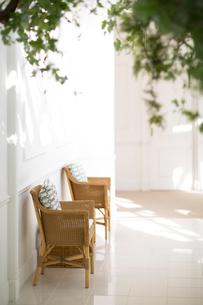 陽射しの入る白い部屋にある藤の椅子の写真素材 [FYI02667273]