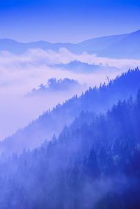 竹田城の雲海の写真素材 [FYI02667335]