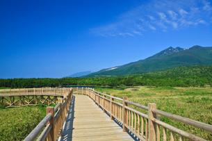 知床一湖と高架木道の写真素材 [FYI02667342]