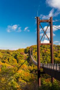 ほしだ園地紅葉と吊橋の写真素材 [FYI02667393]