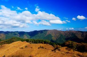 砥峰高原,すすきの写真素材 [FYI02667521]