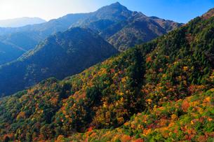 三重県 御在所岳の紅葉の写真素材 [FYI02667617]