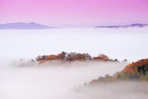 備中松山城の雲海の写真素材 [FYI02667771]
