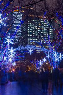 大阪 中之島イルミネーションストリートの写真素材 [FYI02667897]