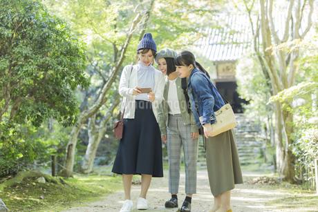 スマートフォンを覗く3人の女性の写真素材 [FYI02668105]