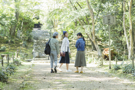 参道を歩く3人の女性の写真素材 [FYI02668129]