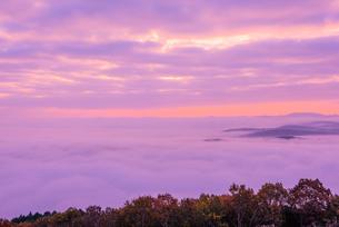 高谷山の雲海の写真素材 [FYI02668335]
