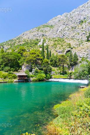 クロアチア、オンブラ川(Ombla)の清流の写真素材 [FYI02668405]