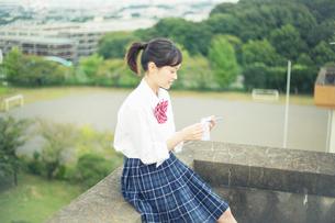 屋外で暗記カードを確認する女子高校生の写真素材 [FYI02668456]